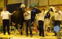 Gaec Besson, Meilleur élevage