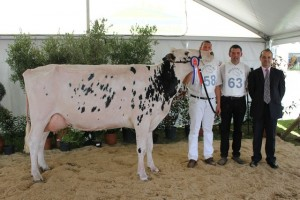 2014-05-12 dep62 champ_adulte bdef