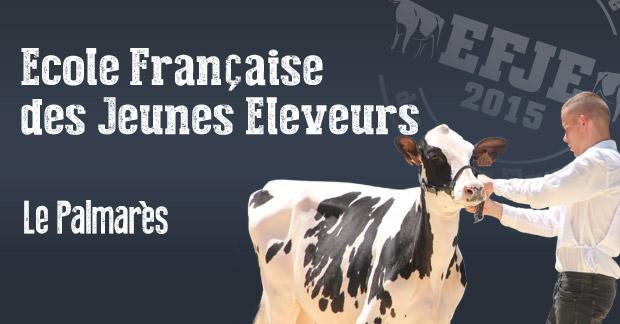 Article-EFJE-palmares2015