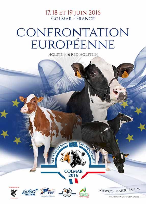 Confrontation européenne de Colmar 2016