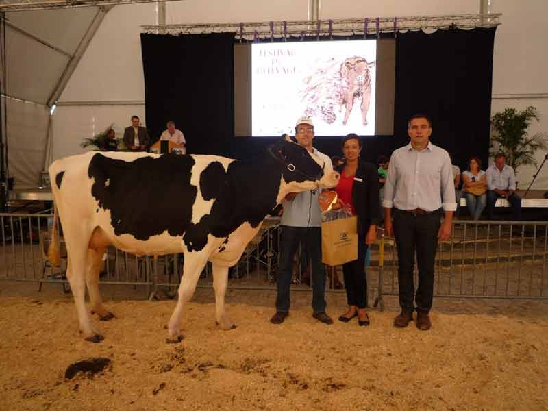 Championne vaches jeunes ICONE RF, GAEC LEYRAT FELGINES