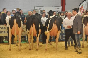 Prix d'élevage, GAEC Vray-Holstein