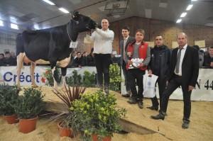Réserve Championne Espoir, Icone (Gofast x Stol Joc) au GAEC du Moulin de Trefoux