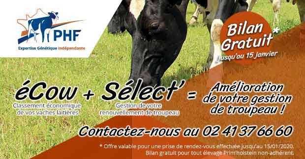 Offre spéciale non-adhérent : Découvrez gratuitement éCow + Sélect'