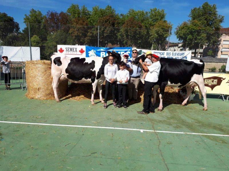 Championne Jeune : Lisyne (Isitolo) - Gaec Sainte Marie - Gavoille et sa réserve Meylyn Glb