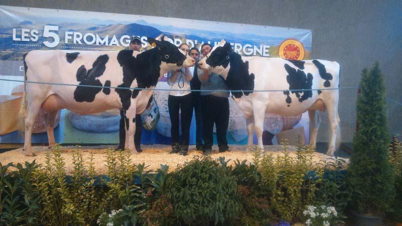 La Championne vache Laudu Shakira et sa Réserve Jalouse Bb