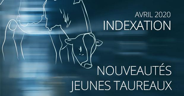 Indexation 20/15 : entrées des jeunes aux catalogues français