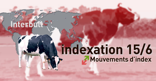 indexation-mouvements-index-confirmes-interbull-image-site