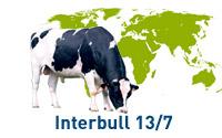 interbull-13-7