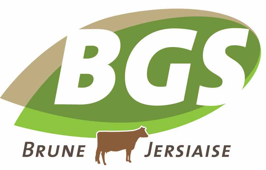 BGS Logo def
