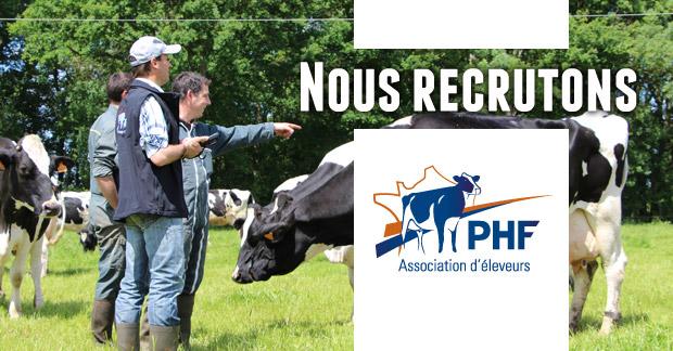 PHF recrute un(e) technicien(ne)-pointeur