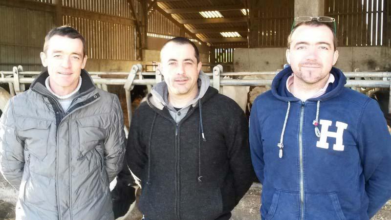 Sébastien, Ludovic et Romain (en cours d'installation) Delaroche (crédit photos Armor Holstein)