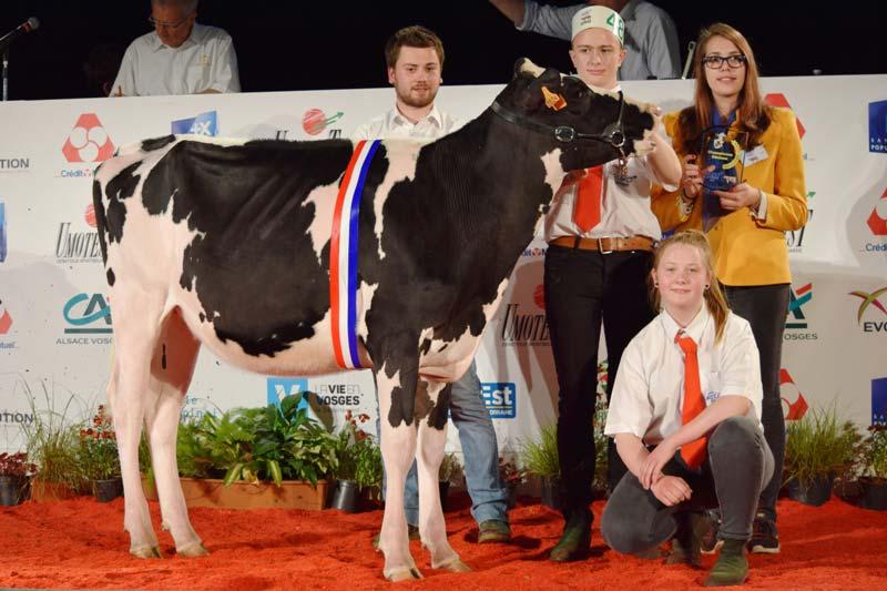 Championne Génisse : L3824