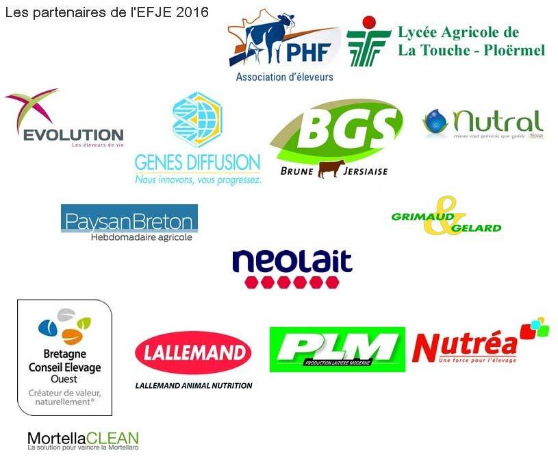 signature_articles_EFJE2016 les_partenaires-2